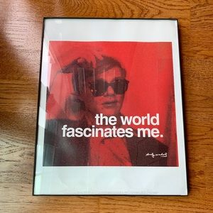 Framed Andy Warhol the world fascinates me poster